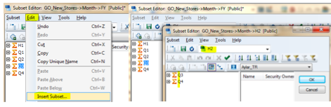 TM1_Hidden_Feature_Existing_Subsets_Insert